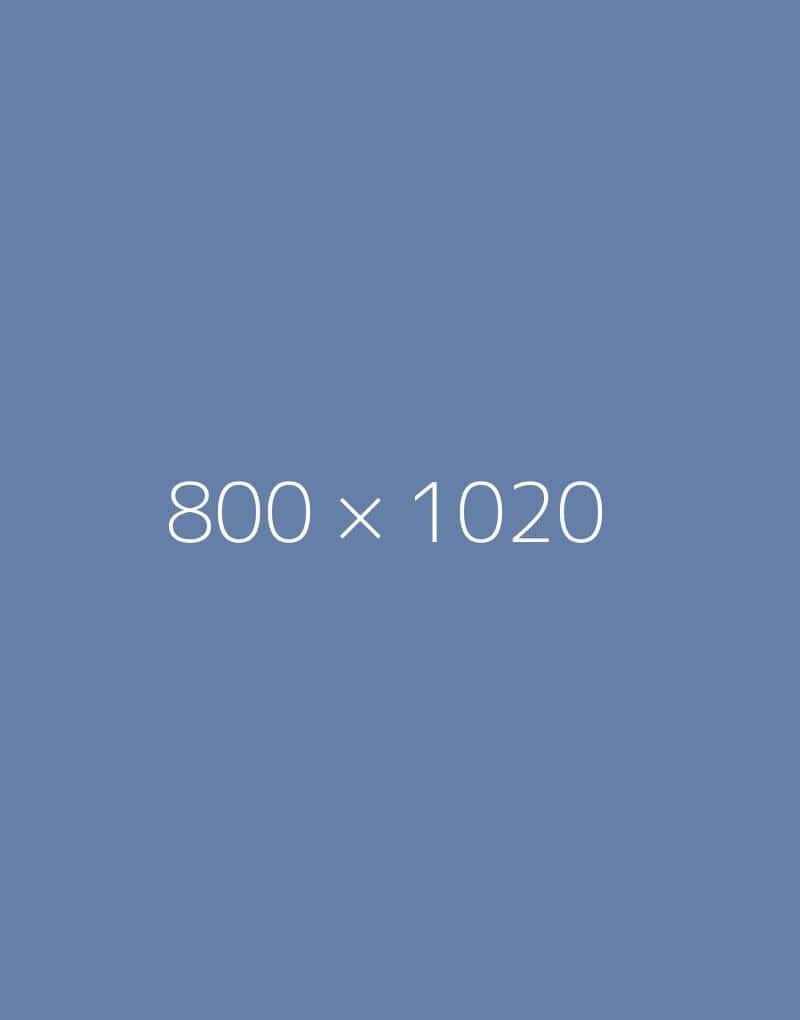 hongo 800×1020-a-ph